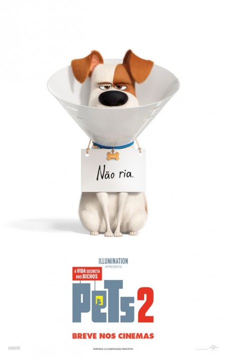 Poster do filme Pets - A Vida Secreta dos Bichos 2