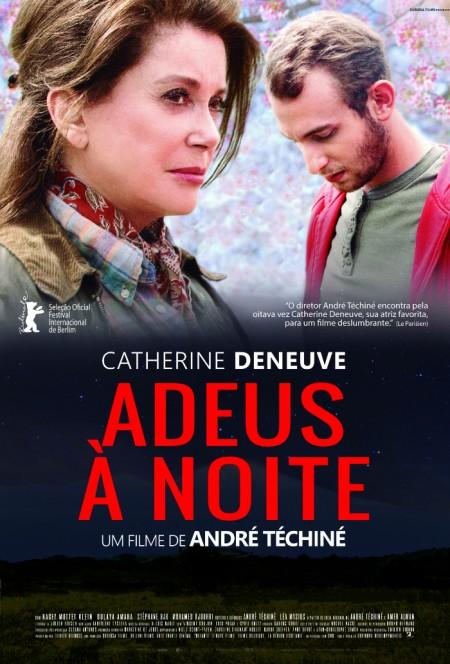 Poster do filme Adeus à Noite