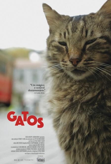 Poster do filme Gatos