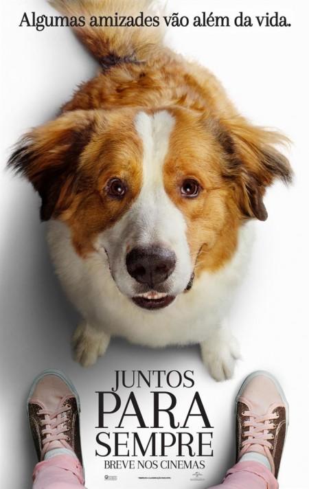 Poster do filme Juntos Para Sempre