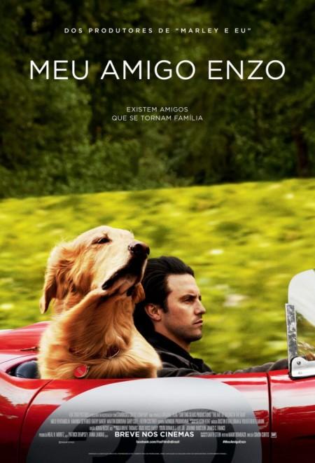 Poster do filme Meu Amigo Enzo