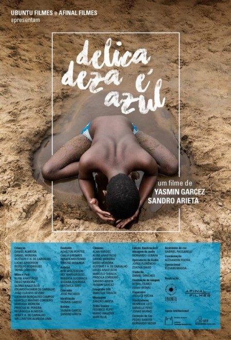 Poster do filme A Delicadeza é Azul